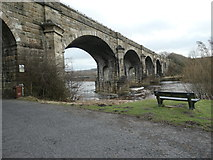 "NY7063 : ""You come to the Alston Arches Viaduct"" by Christine Johnstone"