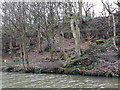 SE1238 : Old quarry in Hirst Wood by Stephen Craven