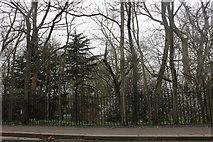 TQ6178 : Grays Town Park by David Howard