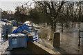 TQ1656 : Flood defences - Minchin Close by Ian Capper