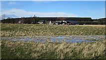 NJ1561 : Flooded Field by Anne Burgess