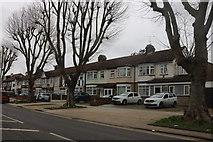 TQ5187 : Rush Green Road, Romford by David Howard