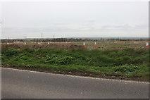 TQ6281 : Fields by Stifford Clays Road by David Howard