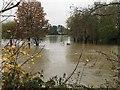 SP2965 : The floodplain is under water, Myton, Warwick by Robin Stott
