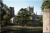 ST5545 : View to Wells Cathedral from path beside moat at Bishop's Palace, Wells by Colin Park