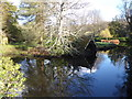 TQ6835 : Reflections at Scotney Castle by Marathon