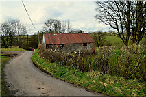 H5371 : Ruined farm building, Bracky by Kenneth  Allen