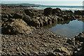 SS1904 : Rockpool, Phillip's Strand by Derek Harper