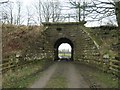 NZ0218 : South side of the Stainmore Line underbridge by Christine Johnstone