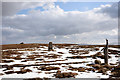 NY8144 : Summit area of Killhope Law by Trevor Littlewood