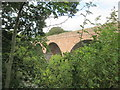 NT5135 : Redbridge  Viaduct  over  River  Tweed by Martin Dawes