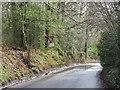 TQ5541 : Stockland Green Road, near Speldhurst by Malc McDonald