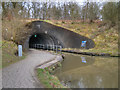 NS8579 : Roughcastle Tunnel, Northern Portal by David Dixon