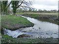 SJ8739 : Trentham Gardens: river Trent by Stephen Craven