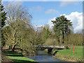 SJ8640 : Trentham Gardens: road bridge over the river Trent by Stephen Craven