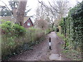 TQ5738 : Cabbage Stalk Lane, Tunbridge Wells by Malc McDonald