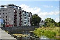 R3377 : River Fergus by N Chadwick