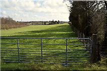 H5172 : Gate to field, Cloghfin by Kenneth  Allen