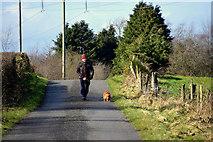 H5172 : Dog walker, Cloghfin by Kenneth  Allen