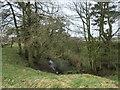 NZ0519 : Former railway cutting near Bluestone Grange by Christine Johnstone