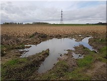 SE6959 : Waterlogged field edge by DS Pugh