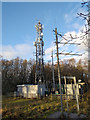 SO4974 : Mobile Phone Mast near Whitcliffe by Jeff Buck