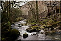 NY1701 : Whillan Beck by Peter Trimming