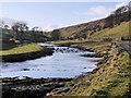 SD8979 : River Wharfe, Deepdale by David Dixon