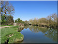 TL4356 : The Cam at Grantchester Meadows by John Sutton
