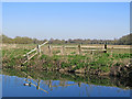 TL4355 : Grantchester Meadows: a fence and a view towards Cambridge by John Sutton