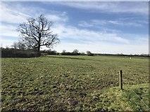 SK1827 : Farmland near Hare Holes Farm by Jonathan Clitheroe