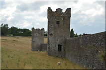 S4943 : Kells Priory - towers and wall by N Chadwick
