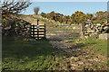 SX6963 : Gate onto the moor near Dockwell Farm by Derek Harper