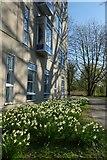 SE6250 : Derwent College M block by DS Pugh