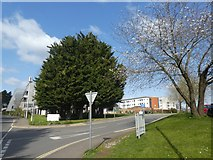 SX9392 : North entrance to hospital, Barrack Road, Exeter by David Smith