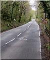 SS7999 : Warning sign - road narrows alongside the B4434 near Clyne by Jaggery