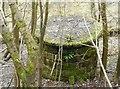 NS5675 : Scour shaft 3, Craigmaddie Reservoir by Richard Sutcliffe