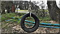 TQ2318 : Tyre swing at Blacklands Farm by Ian Cunliffe