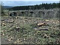 NY6392 : Kielder viaduct from the Lakeside trail by Steve  Fareham