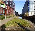 SJ8598 : Ashton Canal by Gerald England