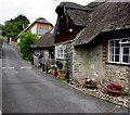 SY3392 : Thatched roof, Pound Road, Lyme Regis by Jaggery