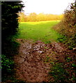 ST3090 : Muddy end of a track from Westfield Way, Malpas, Newport by Jaggery