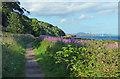 NT3395 : Fife Coastal Path near Coaltown of Wemyss by Mat Fascione