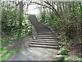 NZ3473 : Public Footpath and Stairs by Geoff Holland