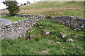 SD9286 : Field bounded by dry stone walls off bend at south end of Blean Lane by Luke Shaw