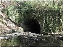 NZ3274 : Tunnel/Culvert, Holywell Dene by Geoff Holland
