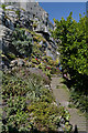 SW5129 : Steps leading to the Castle, St. Michael's Mount by habiloid