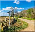 SJ7349 : Waybutt Lane, Chorlton by Scott Robinson