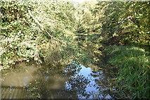 TQ0996 : River Gade by N Chadwick
