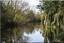 TQ0895 : River Gade / Grand Union Canal by N Chadwick